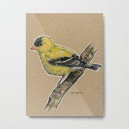 State Bird Series: Iowa - Goldfinch Metal Print