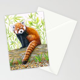 Red Panda Illustration | Watercolour and Ink Drawing | Red, Black and Green Stationery Cards