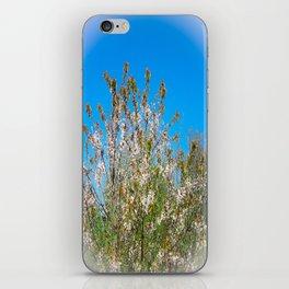 Tree Flowers iPhone Skin