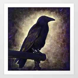 Black Raven of Peace Art Print