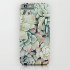 Primrose Green Slim Case iPhone 6s
