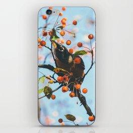 Bird & Berries iPhone Skin