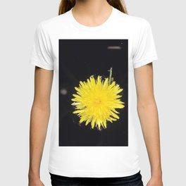 Just Dandy T-shirt