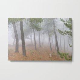 """Dream forest II"". Living in a dream... Metal Print"