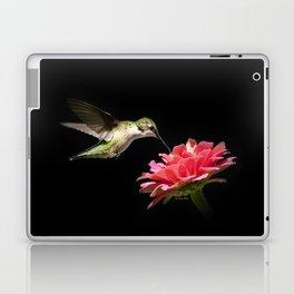 Hummingbird V Laptop & iPad Skin