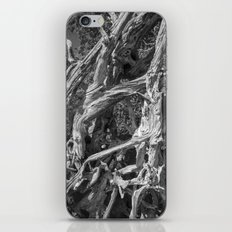 Abstract drift wood iPhone & iPod Skin