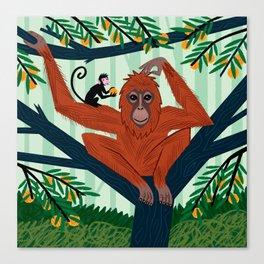 The Orangutan in The Orange Trees. Canvas Print