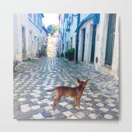 Dog Days Alfama Lisbon Metal Print