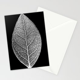 Black and White Macro of a Blueberry Lea Stationery Cards