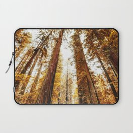 red woods forest in california Laptop Sleeve