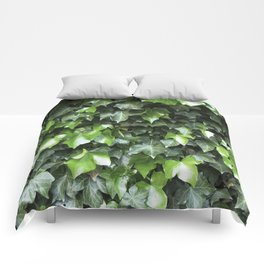 Evergreen Ivy Comforters