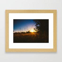 Last Light Framed Art Print