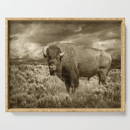 American Buffalo in Sepia Tone Serving Tray