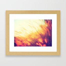 Wheat Grass - Prairie Wheat Grass waving in the wind Framed Art Print