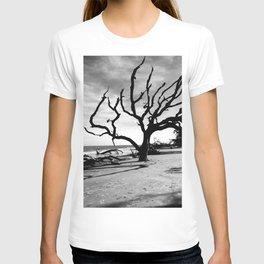 Driftwood Beach T-shirt