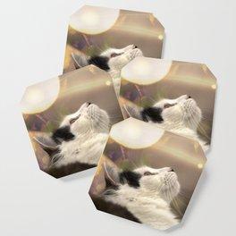 The Oreo Cat: Fall Coaster