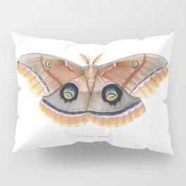 Polyphemus Moth Pillow Sham