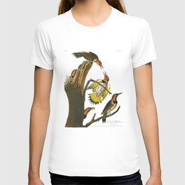 Gold Winged Woodpecker, Woodpecker, John Audubon Birds of North America Antique Print, No 8, Plate 37 T-shirt