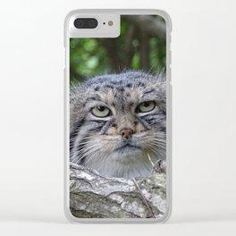Wild Cat Clear iPhone Case