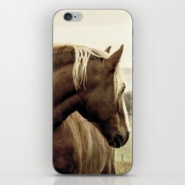 brown horse on the hill iPhone Skin