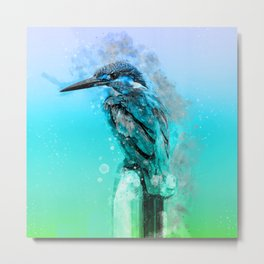 The colorful life of a King Fisher Metal Print