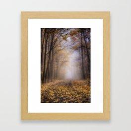 The Enchanted Path Framed Art Print