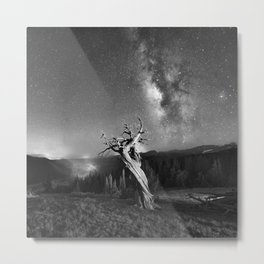 Under Starry Sky At Night Metal Print