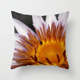 Nymphaea 'Rhonda Kay' V Throw Pillow