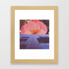 A1 Framed Art Print