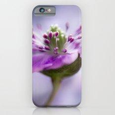 Hepatica Slim Case iPhone 6s