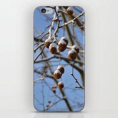 Winter II iPhone & iPod Skin