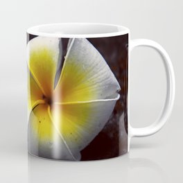 # 339 Coffee Mug