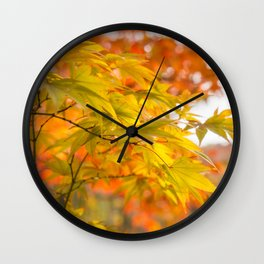 Green and Gold Maple Leaves at Koko-en Garden in Himeji, Japan. Wall Clock