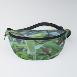 Whipcord Cobra Lily Fanny Pack
