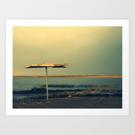 Sunshade Art Print