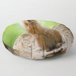 Black Tailed Prairie dog Floor Pillow