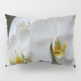 Immaculate Pillow Sham