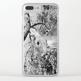 Fawn, Black & White Clear iPhone Case