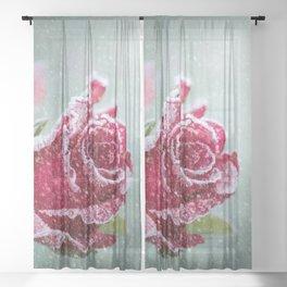 Fantastic Popular Ice Flower Petals Zoom UHD Sheer Curtain