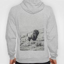 Nomad Buffalo Hoody