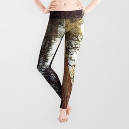 Deep in the Forest Leggings
