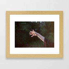 Catching Light Framed Art Print