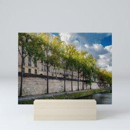 The Perfect Light, Paris France Mini Art Print