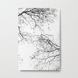 BLACK BRANCHES 2 Metal Print