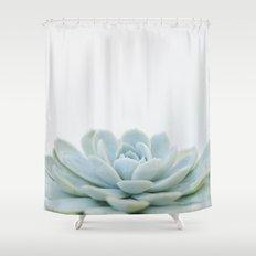 succulent 02 Shower Curtain