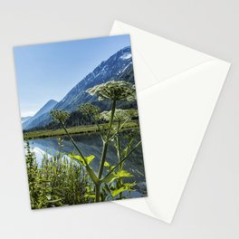 Wildflowers by the Side of Tern Lake Stationery Cards