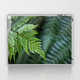 Fern Hollow Laptop & iPad Skin
