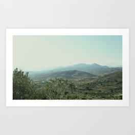 Greek Olives Art Print