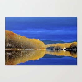 Only Here Canvas Print
