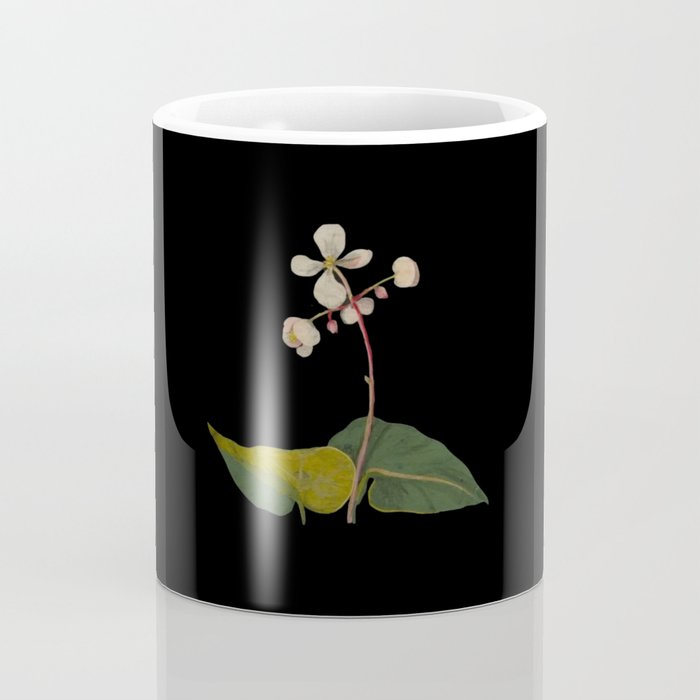 Begonia Obliqua Mary Delany Delicate Paper Flower Collage Black Background Floral Botanical Coffee Mug